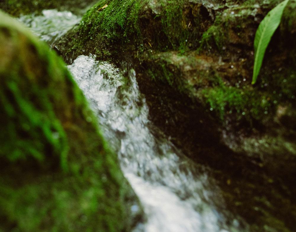 Ríos de Llanes